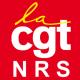 CGT NRS